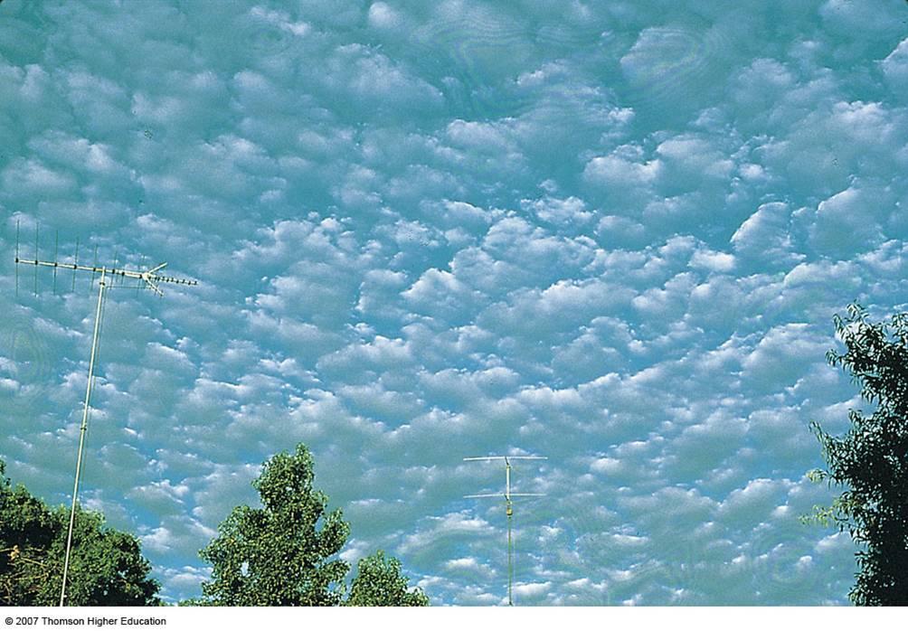 Middle Clouds - Altocu...